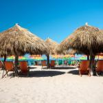 Top 10 Beach Bars In Puerto Vallarta 2019